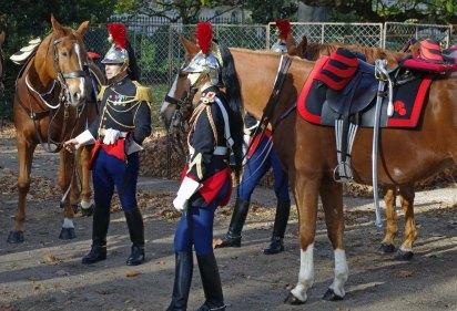 p4horse